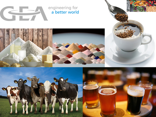 GEA – Our Company