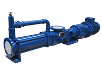 Designed for applications where other pumps fail thanks to their ability to handle viscous slurries, large particles and long distance, high pressure transfer. Send our technical sales engineers your enquiry today.