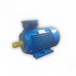 WEM LOW VOLTAGE HIGH EFFICIENCY MOTORS
