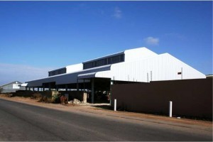 Talas Properties: Polokwane Steel Buildings